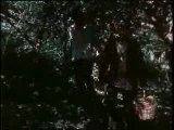 Хлеб - имя существительное(7с) 1988 (реж.Григорий Никулин),к/ст